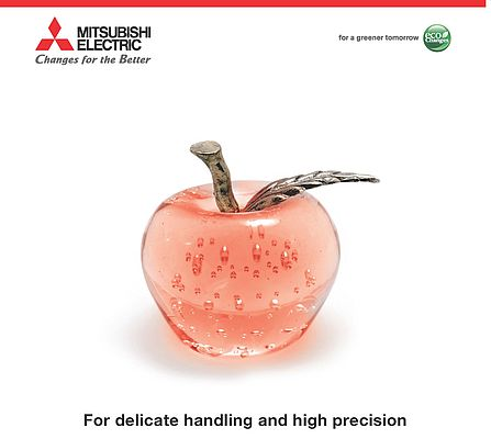 For Delicate Handling and High Precision