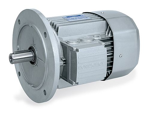 Electric Motors Between Efficiency and Performance