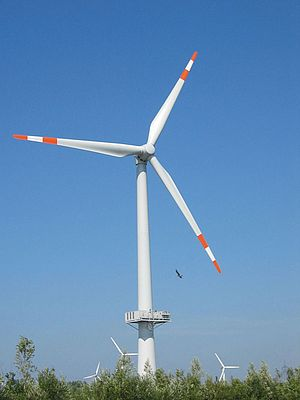 Single Bearing Designs for Wind Turbines