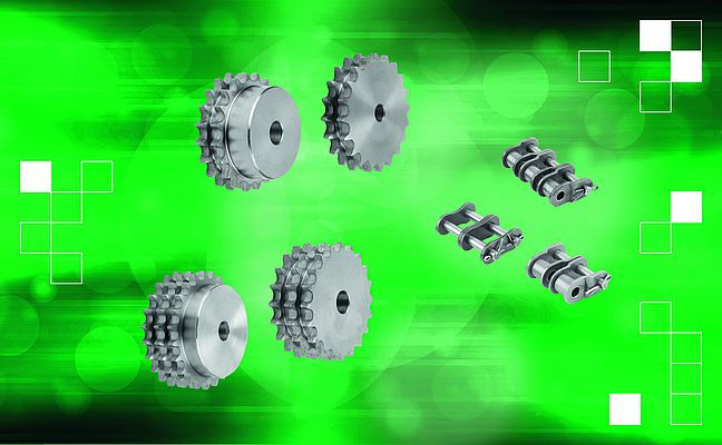 Duplex and Triplex Roller Chains