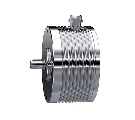 Internal rotor brushless motors