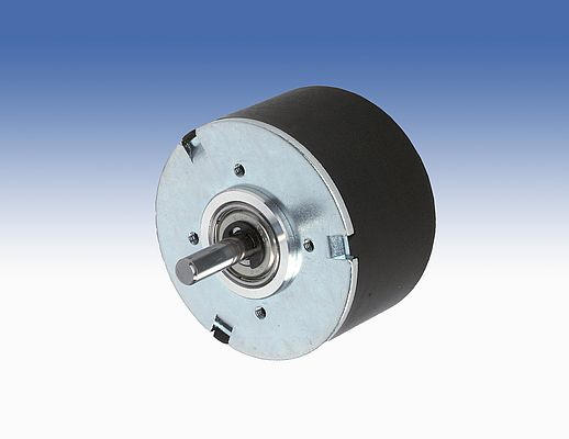 Bidirectional Brushless Motor