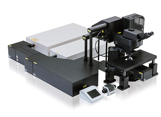 Multiphoton Microscope System