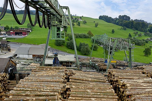 The expansive round timber yard is completely covered by the large gantry crane. A small gantry crane helps its big brother to restack the logs.
