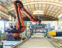 Flexible Robots for Warehouse Logistics