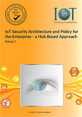 Enterprise IoT Security Architecture and Policy
