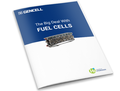 The Big Deal of Fuel Cells