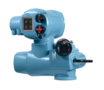 Modular Electric Valve Actuators