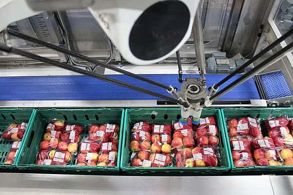 With many end-of-line packing stations now automated, incorporating vision is becoming increasingly commonplace